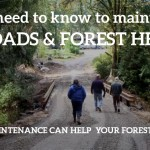 Good Roads & Forest Health