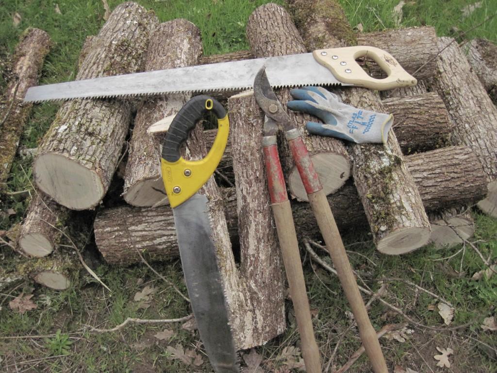 mush-logs0001