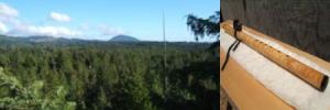 cedargrove