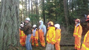 NNRG teaching forestry techniques to Americorps members at Camp Orkila