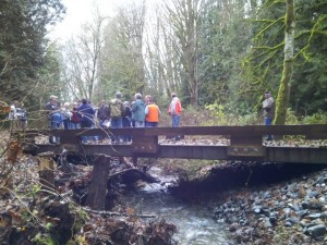 Workshop attendees viewing a new bridge that replaced a series of concrete barriers blocking fish passage in the Skagit Watershed. This forest owner enrolled in DNR's Family Forest Fish Passage Program.
