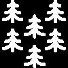 005-pines