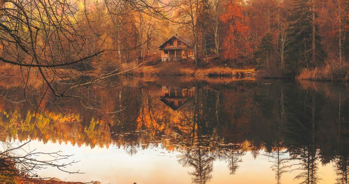 autumn-2021154_1920